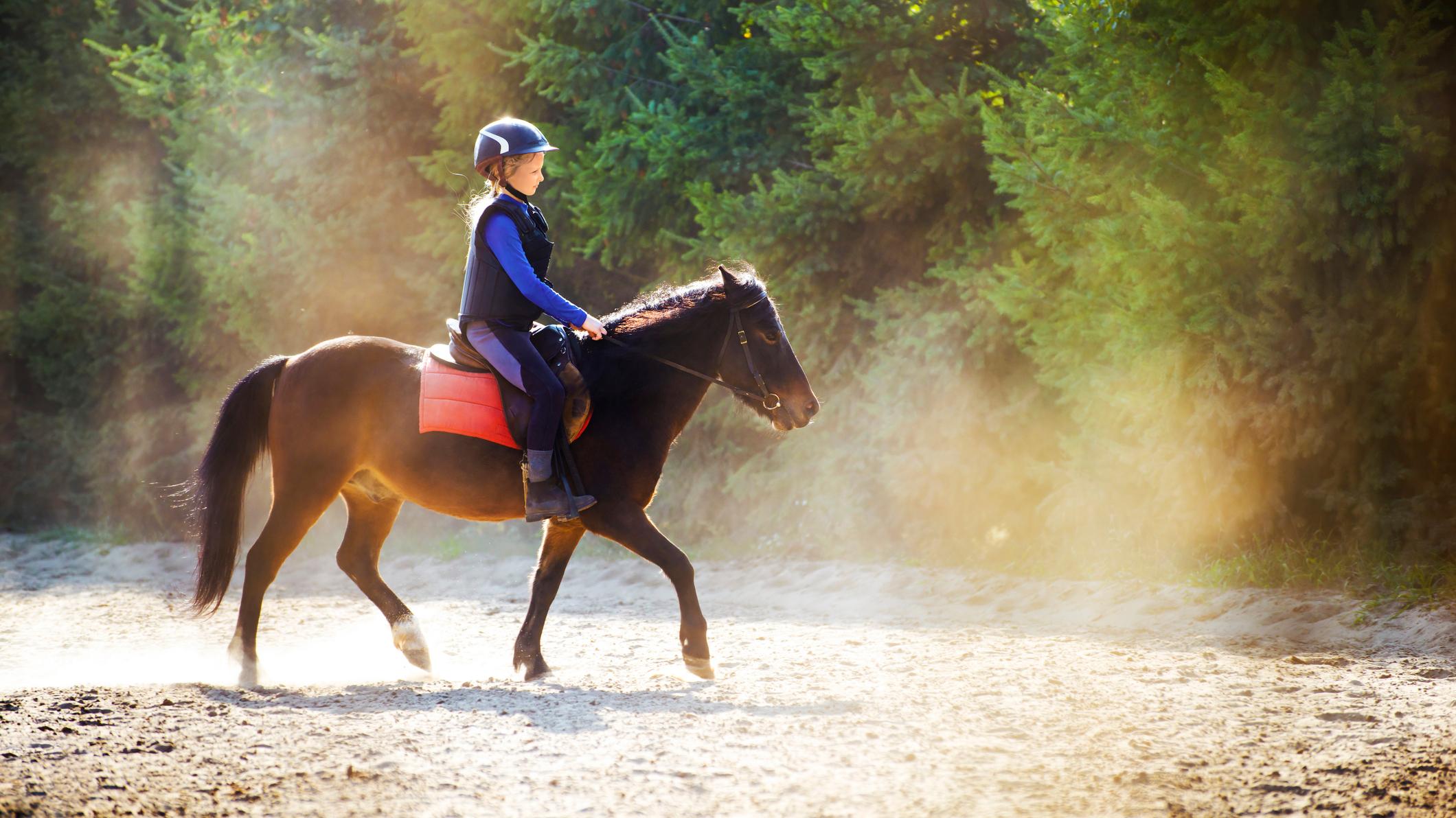конные клубы для детей в москве